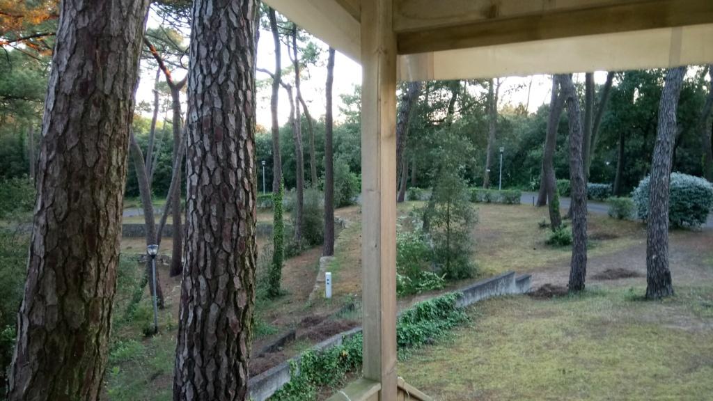 Camping sympa à me conseiller proche de Nantes Dsc_0019