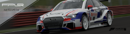Audi RS3 LMS Cup