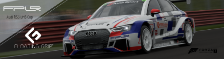 Floating Grip Audi RS3 LMS Cup