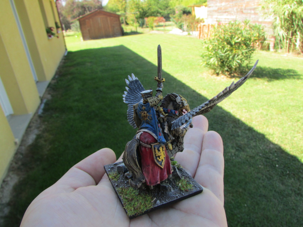 Medieval war Img_1811