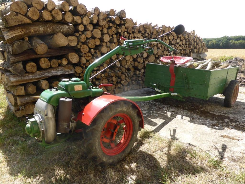 J'ai rentré le bois Bois_010
