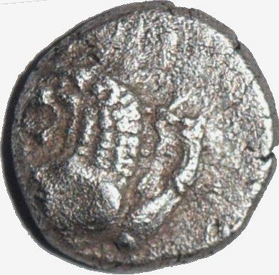 Diobolo de Chersonesos, Tracia. Ca 500 a.C. Dedicada al Maestro62. 483a10