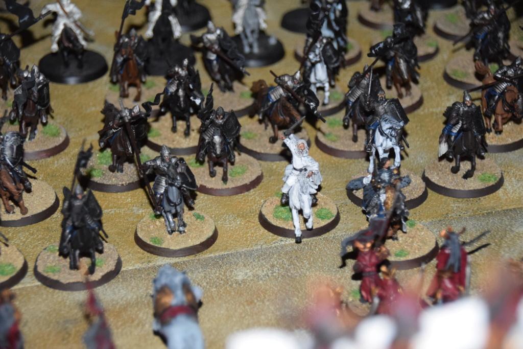 Nouvelles figurines - Page 5 Dsc_0815
