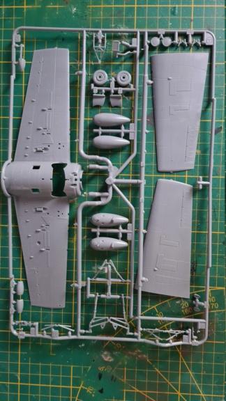 F4F-4 Wildact Tamiya 1/48 20210236