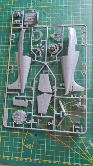 F4F-4 Wildact Tamiya 1/48 20210238
