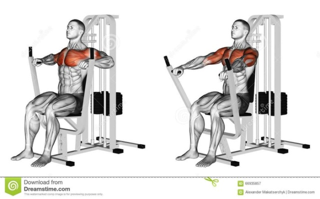 Tổng hợp các bài tập ngực từ cơ bản đến nâng cao trong thể hình Bai-ta18
