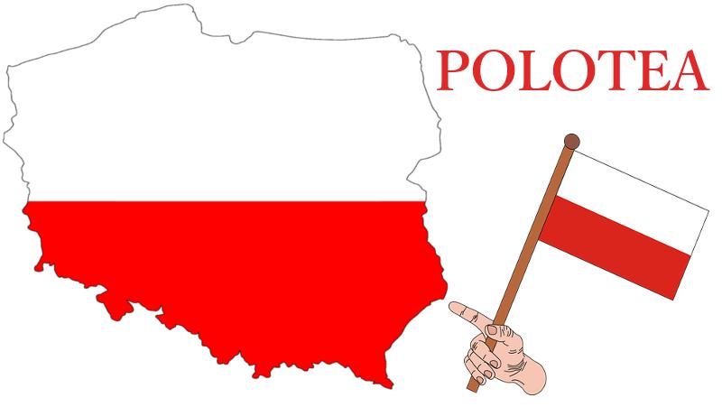 Polotea