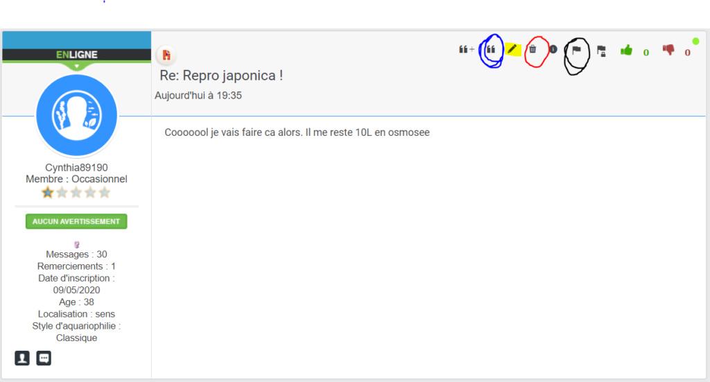 Repro japonica !  - Page 2 Mini_t10