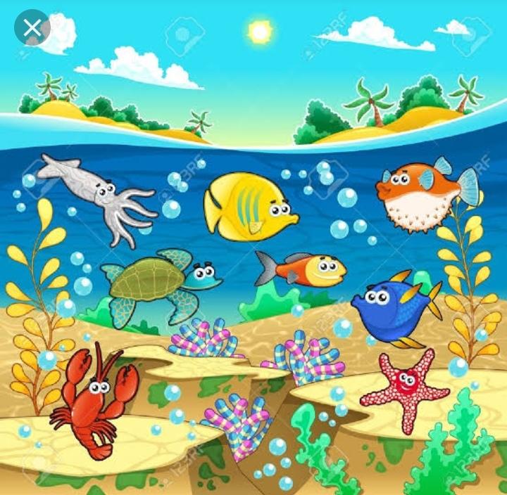 Peces van, peces vienen Img_2010