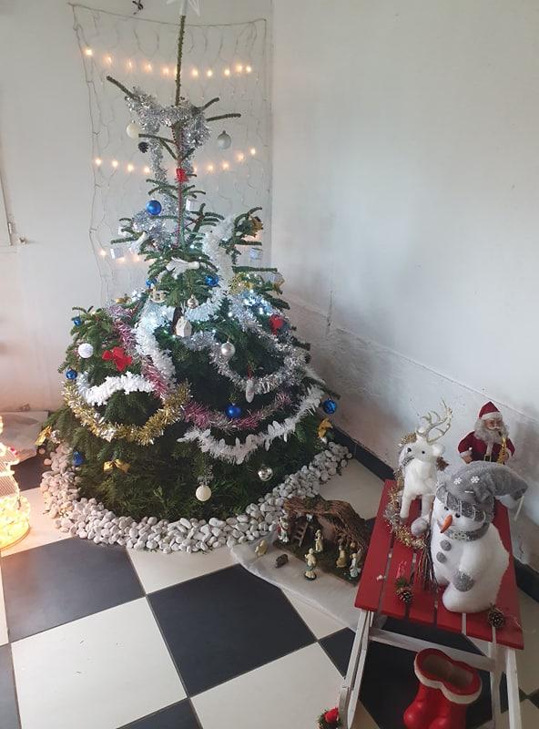 Nos sapins de Noel Noel_210