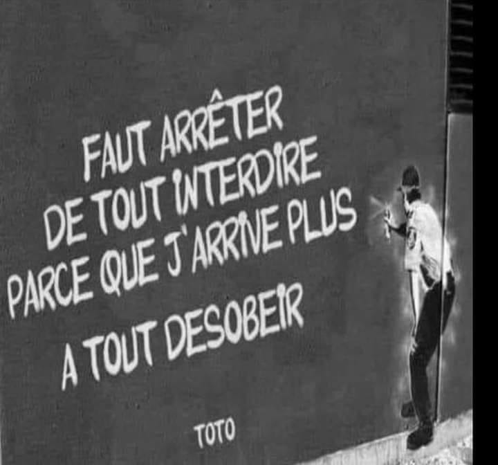 humour - Page 39 14166410