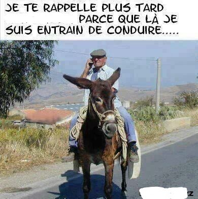 humour - Page 2 14438810