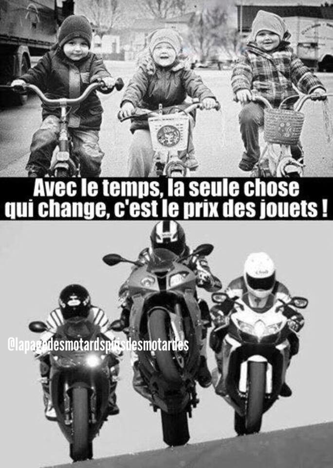 humour - Page 25 25659510
