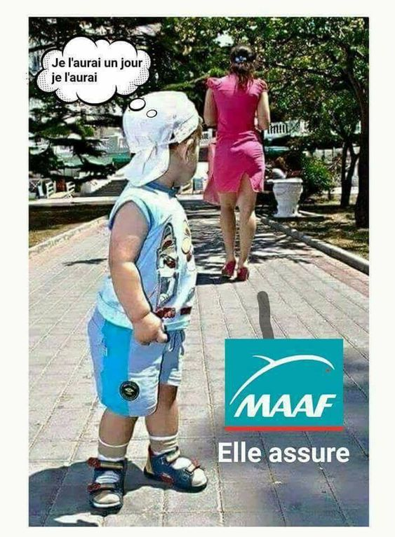 humour - Page 6 27c21010