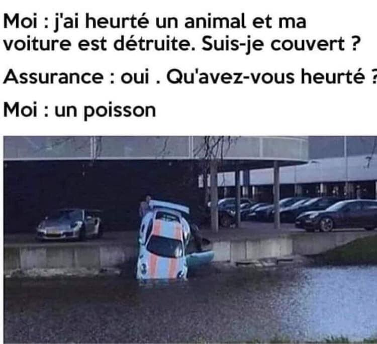 humour - Page 24 49259310
