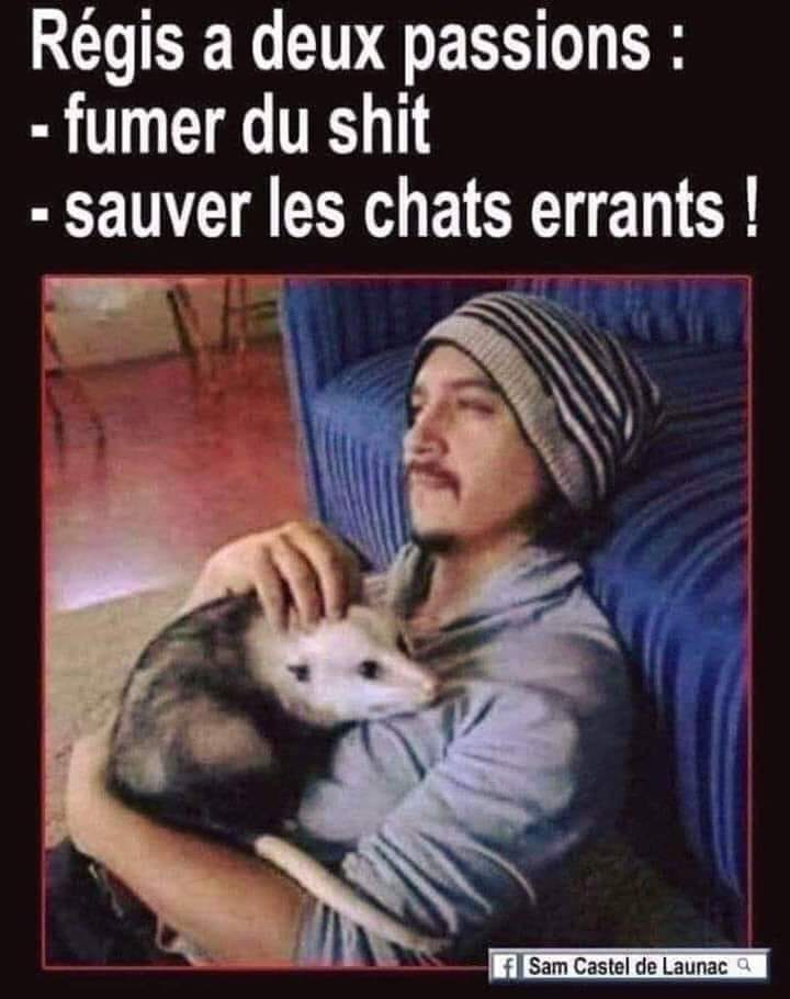 humour - Page 7 61802710