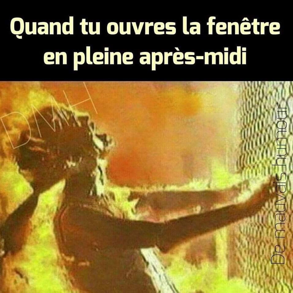 humour - Page 5 65526910