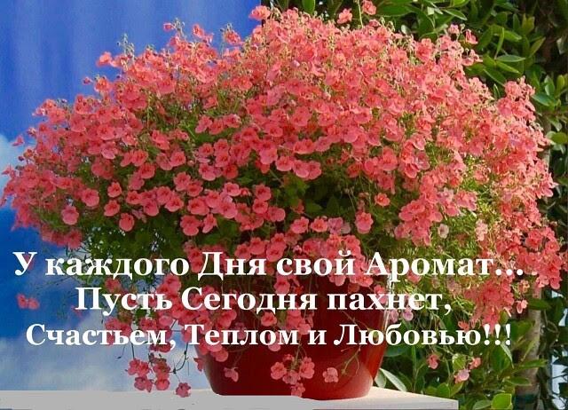 С праздником милые женщины! - Страница 2 Unname17