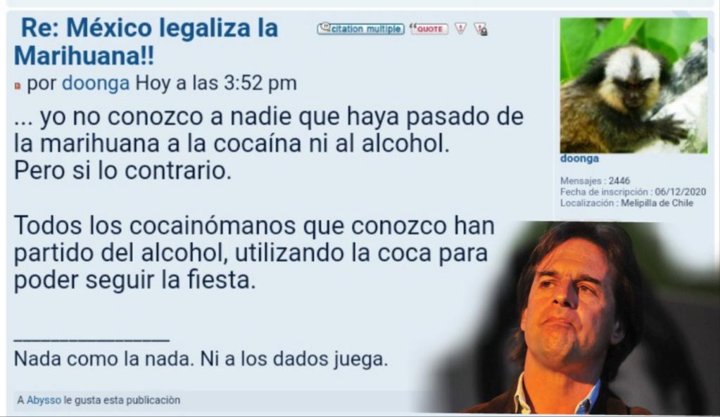 México legaliza la Marihuana!! - Página 2 Photoe13