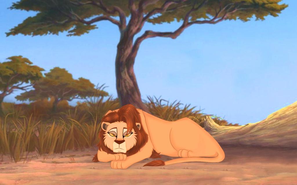 Amani, el león solitario [en construcción] Amani10