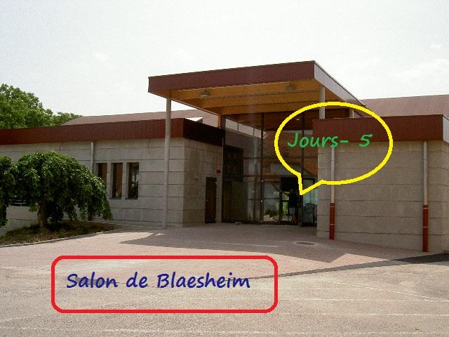 Salon pêche Blaesheim 2015 - Page 2 10
