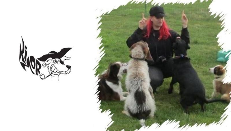 Cani-vacances en Bretagne: une semaine au gîte Ki-Mor + activités canines 11024210