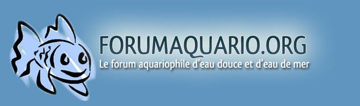 Forumaquario.org