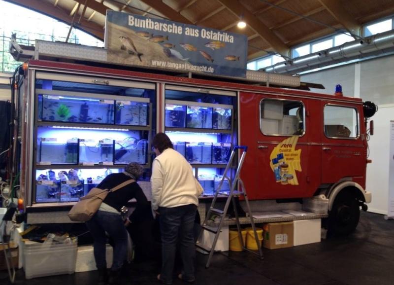 2me Congrès IBC européen + 11me KFF Betta Show, Friedrichshafen 2015 11046710