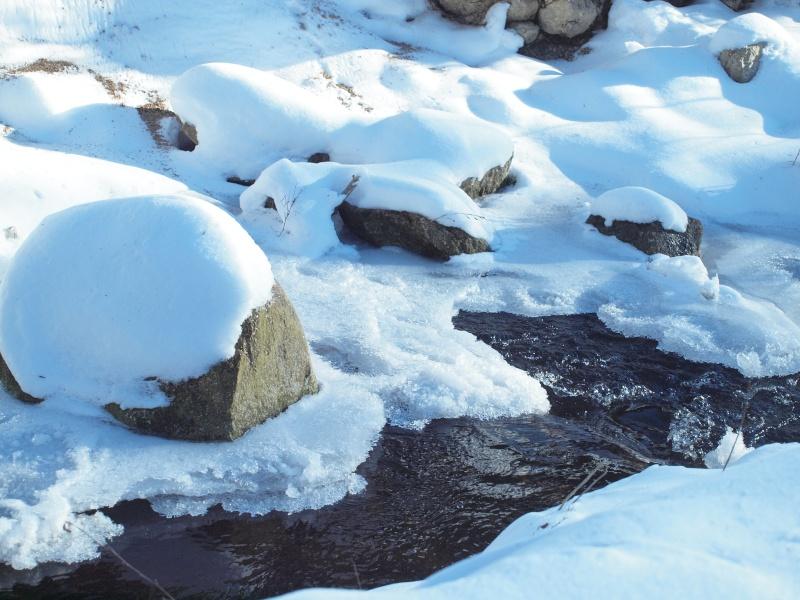 lac gelé P2095210