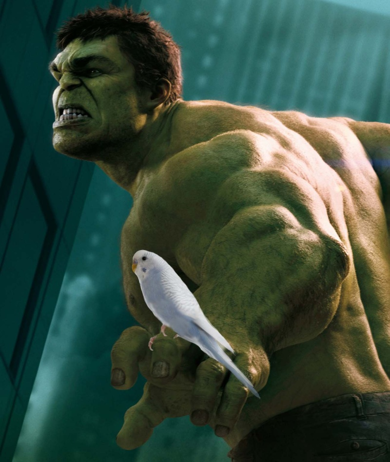 Choix des sexes Hulket10