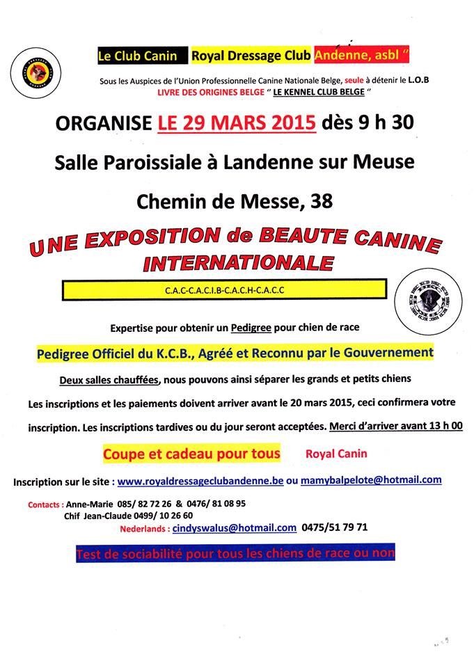 Au kennel club belge 10255210