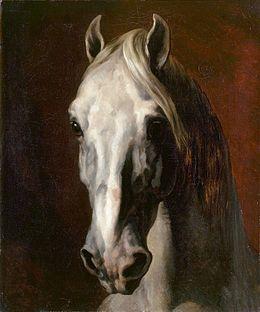 Cherche idée tableau de maitre représentant un cheval  Gerica10