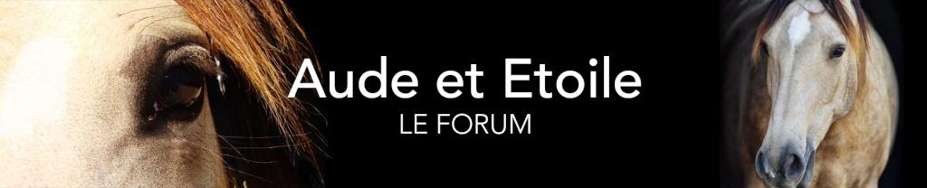 Aude et Etoile