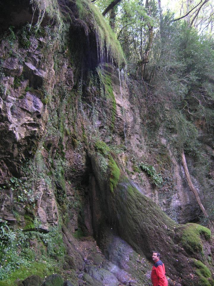 Cordes village médiéval  Cascad11
