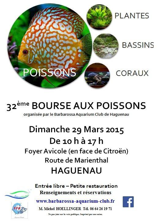 Bourse à Haguenau - Dimanche 29 mars 2015 Affich11