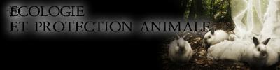 Écologie et protection animale