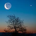 La lettre Guide du Ciel - Page 3 Lune-v10