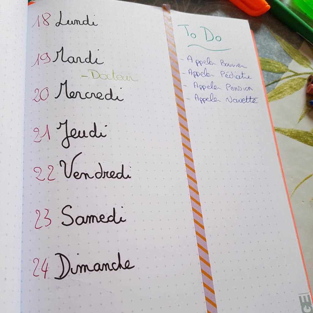 Le bullet journal - Page 3 Img_2027