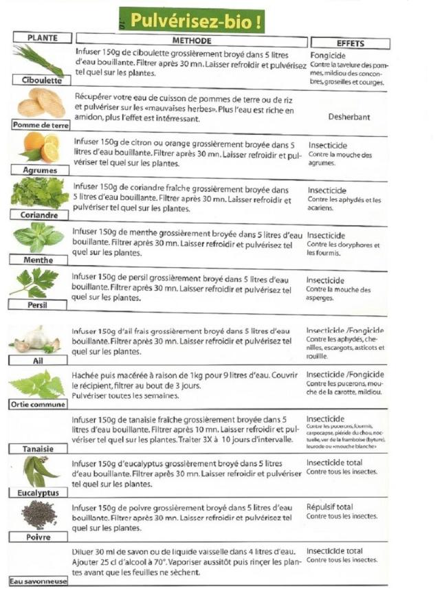 Soigner  ses  plantes  sans  polluer Traite10