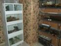 Projet killie room Dscf4811