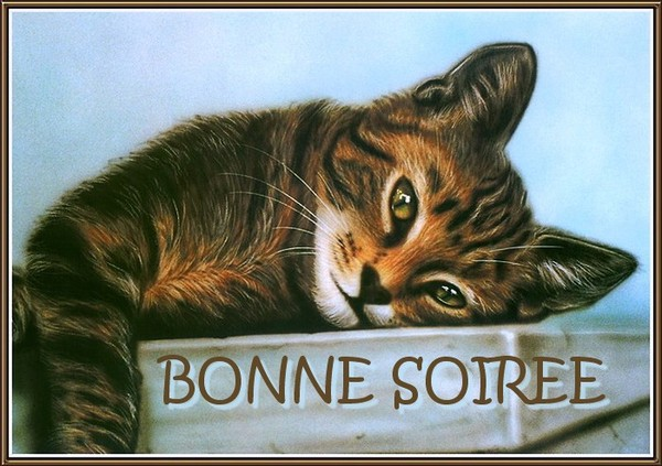 BONNE SOIRÉE DU LUNDI 23 FEVRIER 63523a10
