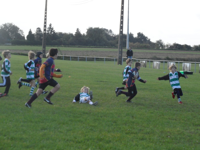 Résultats Ecole de Rugby 29/09 Rugby_28