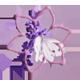 [Forum] Décorations d'intérieur Flower12