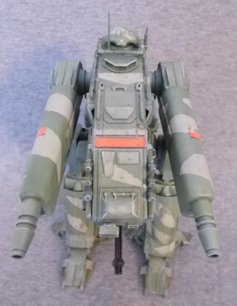 Marcheur M500 DRAGOON - Page 3 Dscn0727