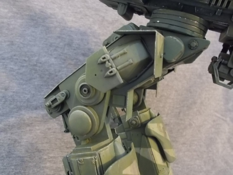 Marcheur M500 DRAGOON - Page 3 Dscn0731