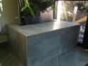 Phill : mon Premier mur végétal  Dscf1520