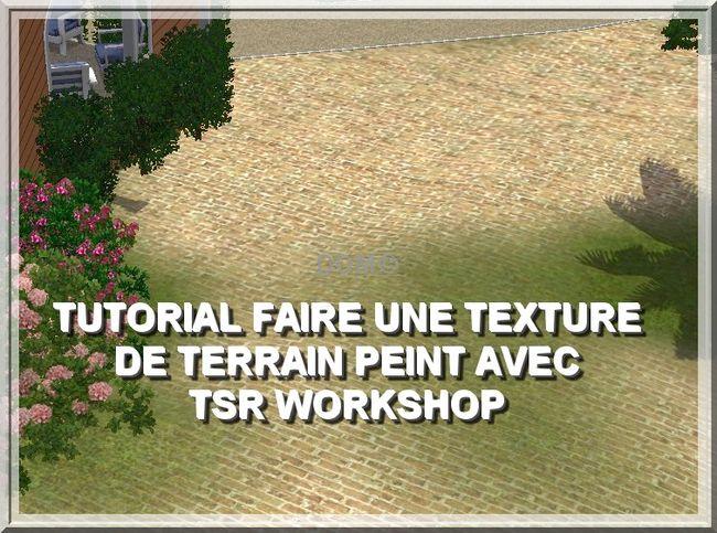[Débutant](TSR Workshop] Tutoriel texture de terrain peint Gcs00416