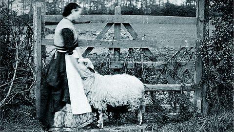 Adaptations radiophoniques diverses des romans de Thomas Hardy par la BBC P01l4h10
