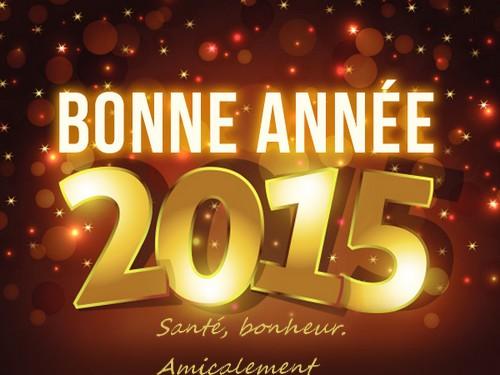 Bonnes Fêtes 2014 et Meilleurs Vœux à tous pour 2015 - Page 4 Voeux10