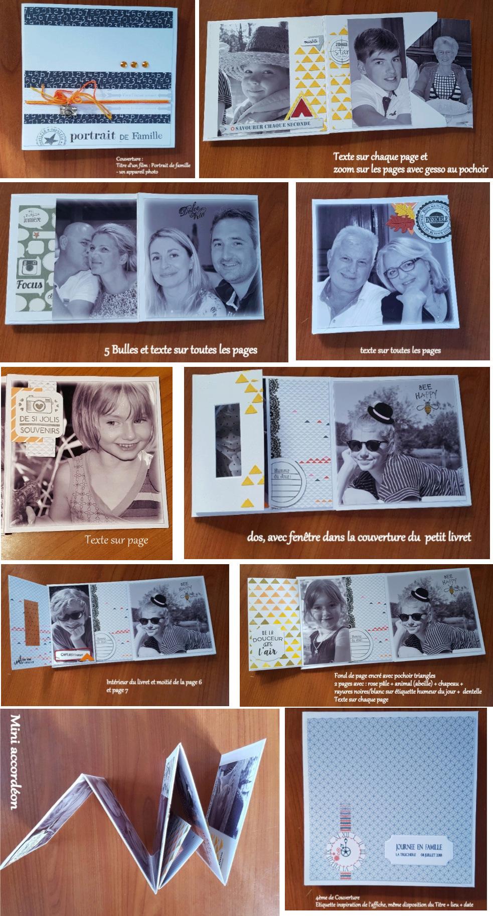 Galerie sujet mini album équipe A les ZARTIST'O CHATS Image111
